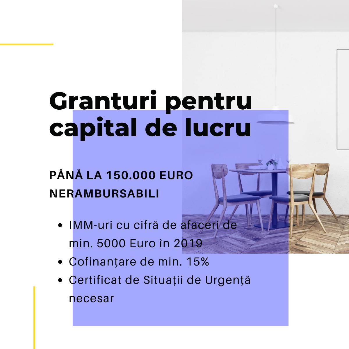 Granturi capital de lucru
